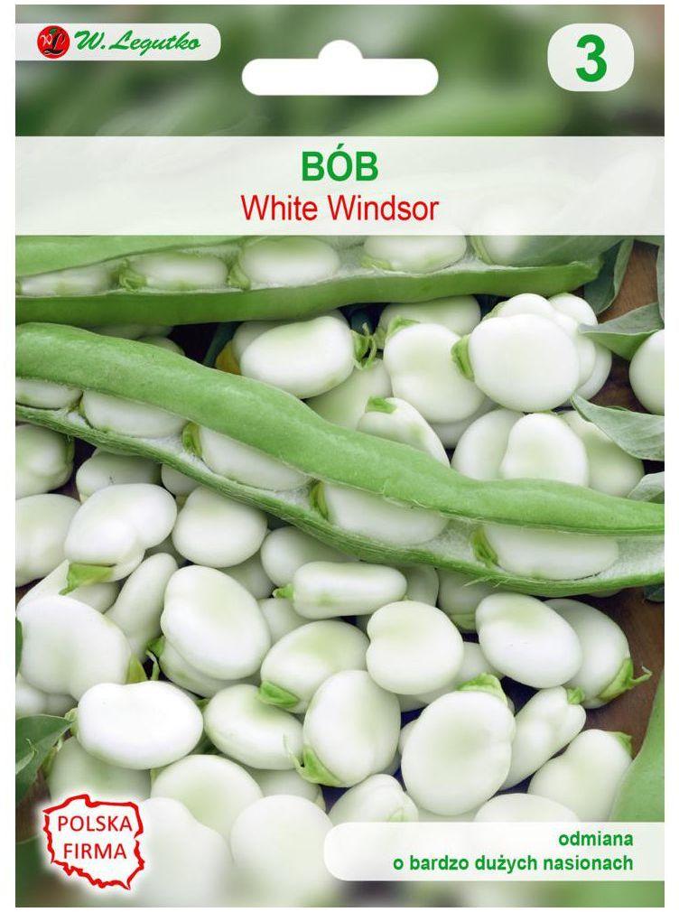Bób WINDSOR BIAŁY nasiona tradycyjne 50 g W. LEGUTKO
