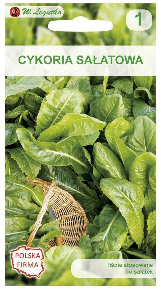 Cykoria liściowa DI BRUXELLES nasiona tradycyjne 2 g W. LEGUTKO