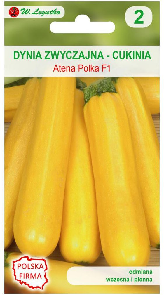 Dynia zwyczajna (Cukinia) ATENA POLKA F1 nasiona tradycyjne 2 g W. LEGUTKO