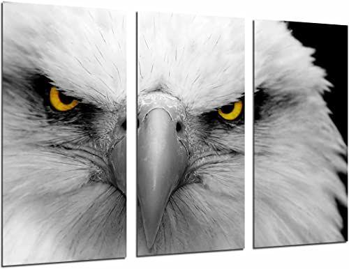 Obraz ścienny - zwierzęcy cesarski biały orzeł, żółte oczy, 97 x 62 cm, druk drewniany - format XXL - druk artystyczny, ref.26813