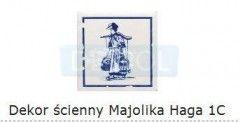 D-Majolika Haga 1c 115x115 mmTubądzin