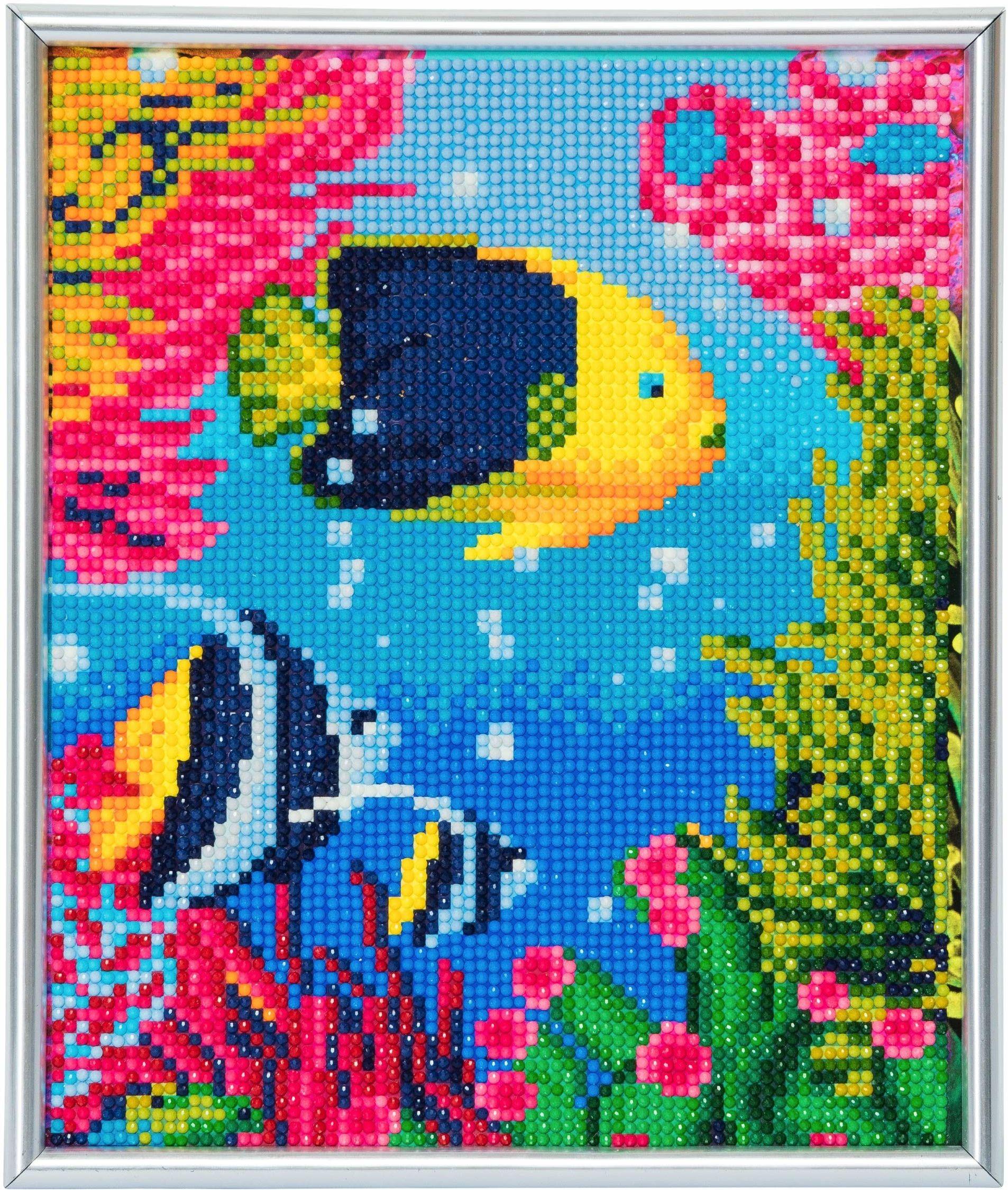 Crystal Art CAM-17 tropikalne ryby, 21 x 25 cm, ramka na zdjęcia, kryształy, zestaw ze srebrną ramą, wielokolorowy
