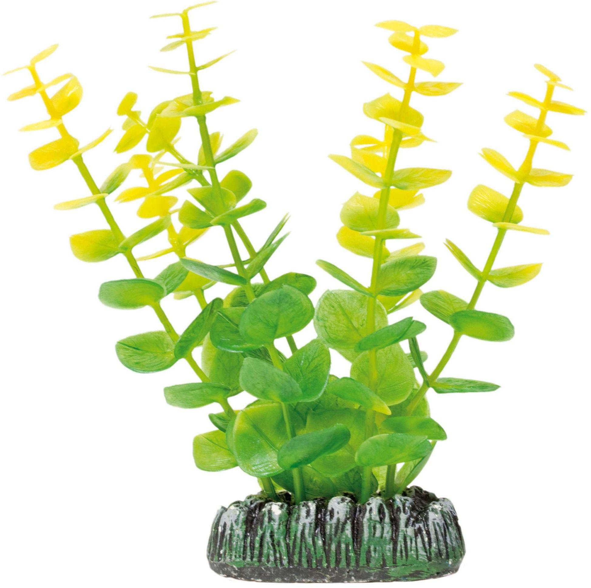 ICA AP1009 Bacopa dla roślin wodnych, tworzywo sztuczne