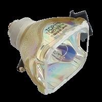 Lampa do TOSHIBA TLPLW2 - zamiennik oryginalnej lampy bez modułu