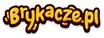 Logo sklepu brykacze.pl
