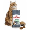 karmy dla kotów