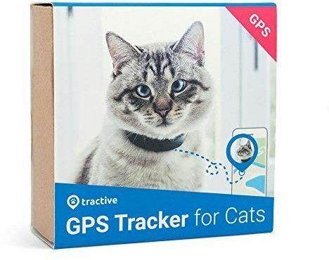 GPS dla psów