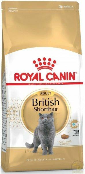 Karma dla kota brytyjskiego