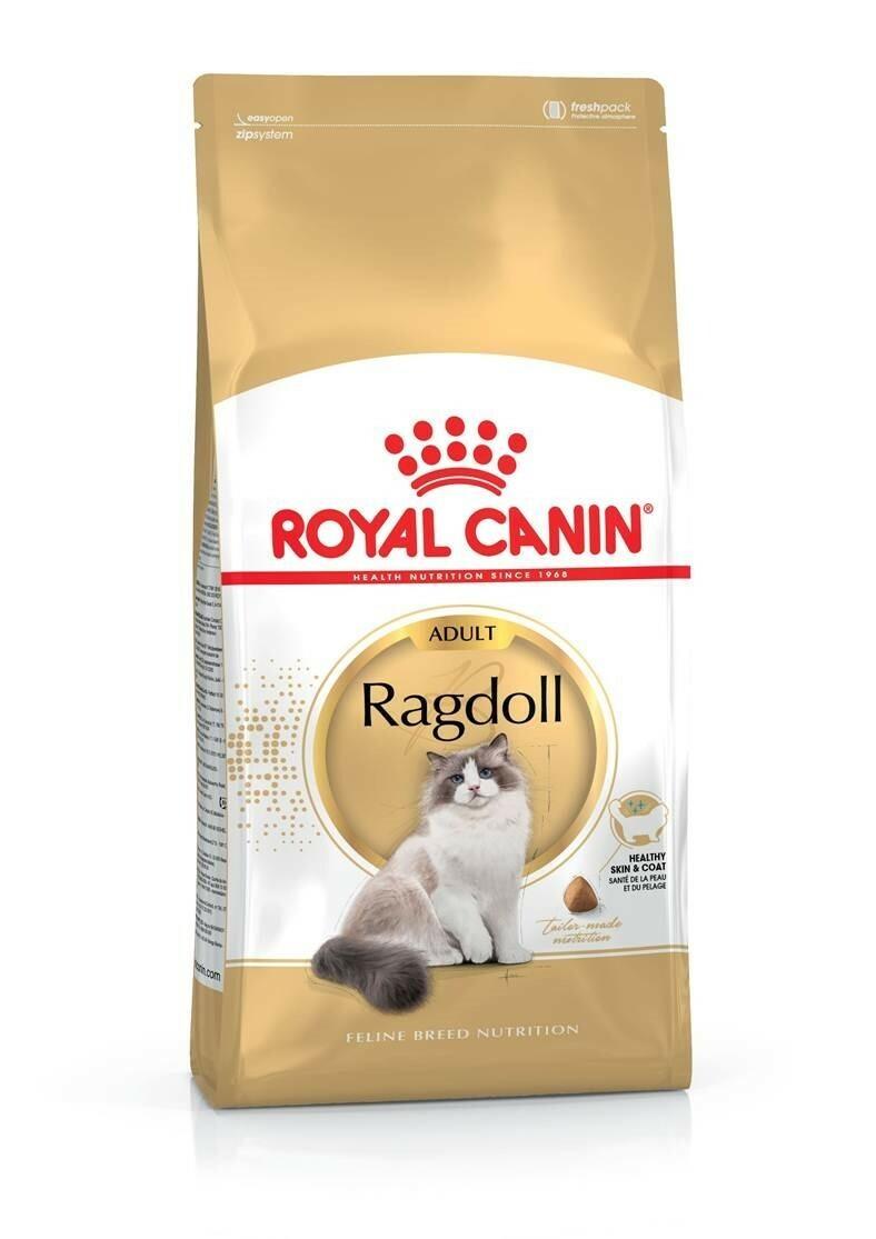Karma dla kota ragdoll