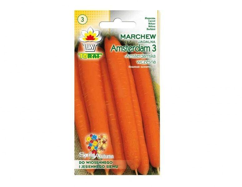 Nasiona marchwi