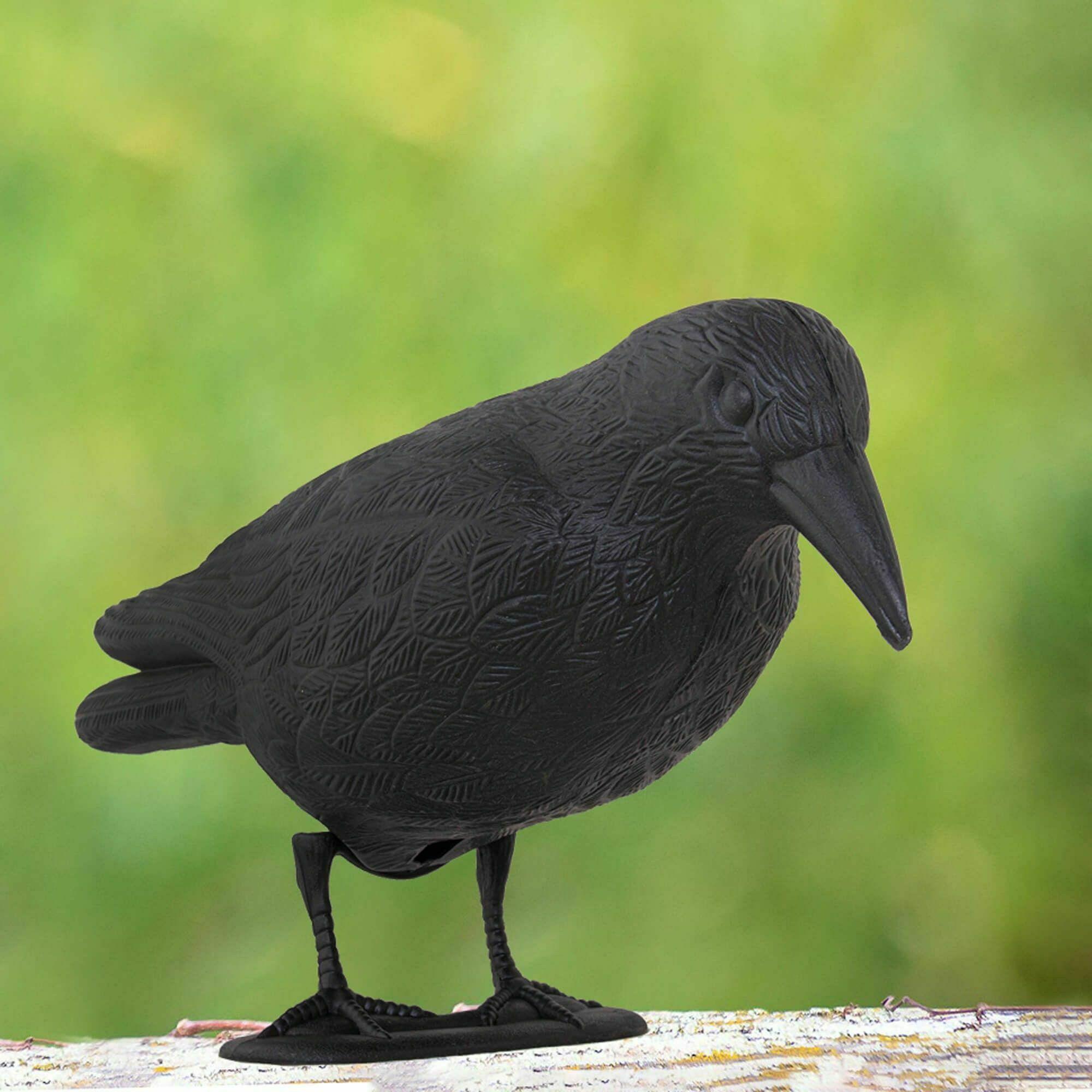 Odstraszacz ptaków