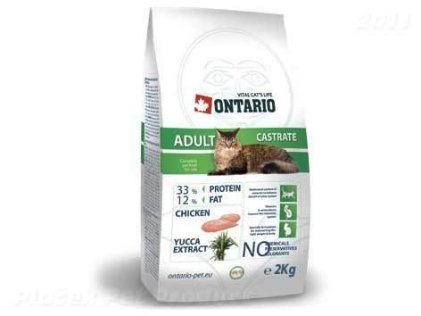 Ontario karma dla kota
