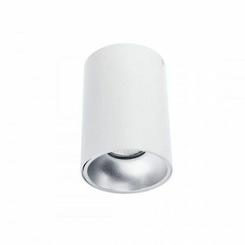 Plafon srebrny