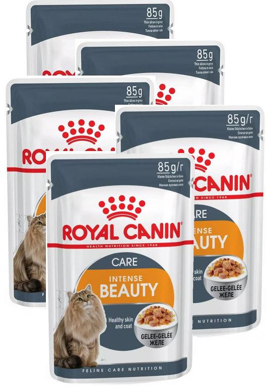 Royal Canin saszetki dla kota