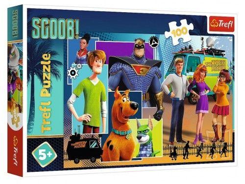 Trefl puzzle 100