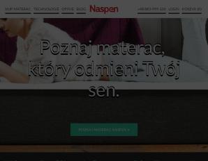 strona Naspen.pl